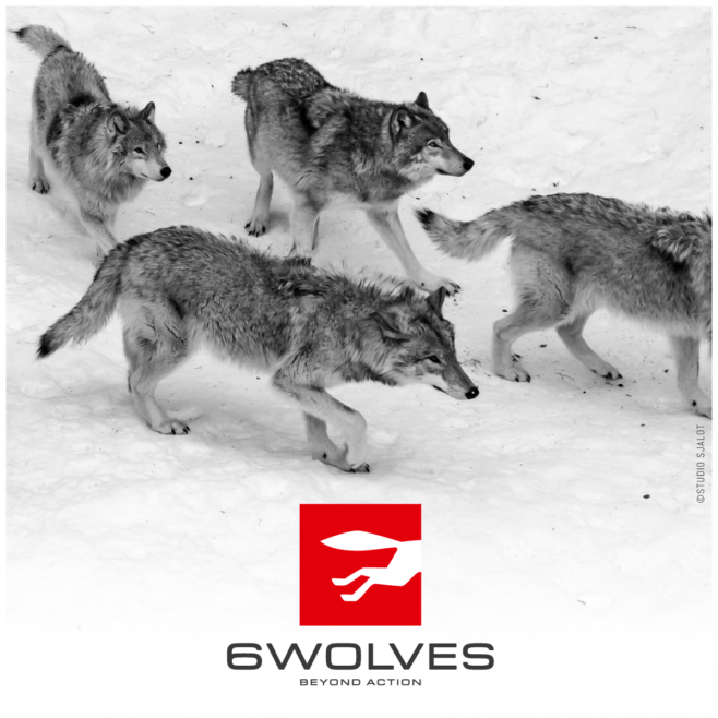 6 WOLVES